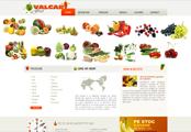 Valcar Fruct